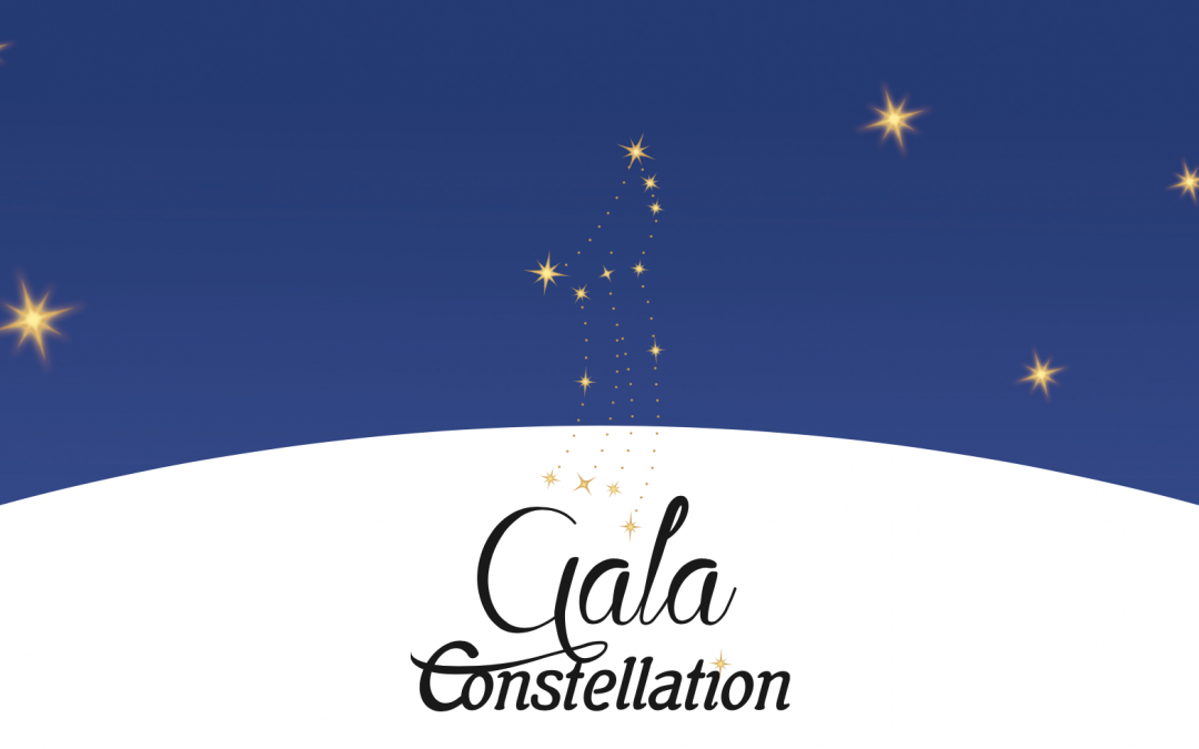 Gala Constellation – Chambre de commerce de Saint-Hyacinthe – gagnant commerce au détail